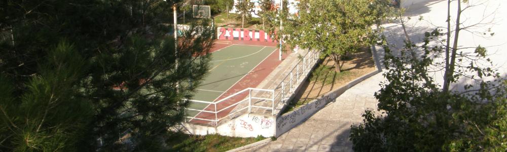 SS_Basket.png